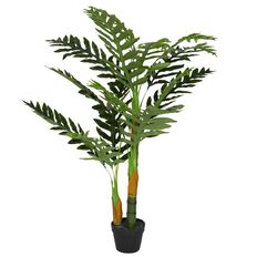 Uniti Palm Tree Potted