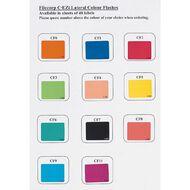 Filecorp Coloured Labels Z Multi-Coloured