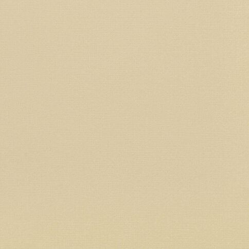 American Crafts Cardstock Textured 12 x 12 Oatmeal Brown