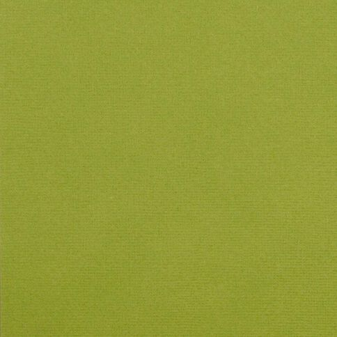 American Crafts Cardstock Textured 12 x 12 Leaf Green