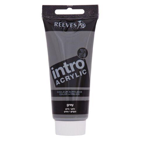Reeves Intro Acrylic 100ml