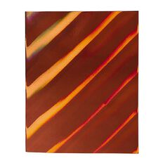 WS Book Cover Holographic Champaign Gold 45cm x 1m