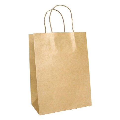Small Twisted Handle Paper Bag 25 Pack