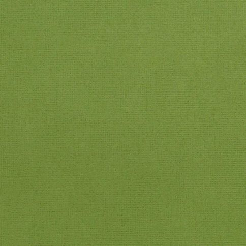 American Crafts Cardstock Textured 12 x 12 Spinach Green