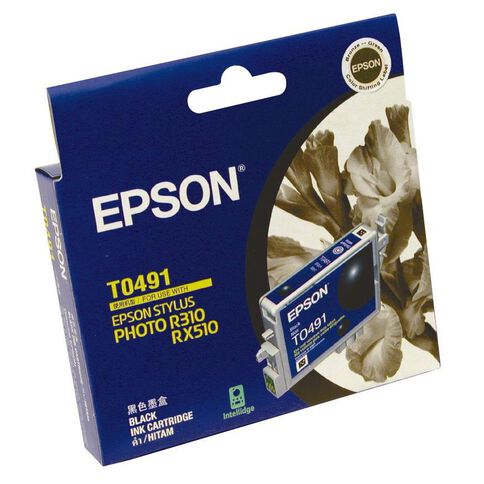 Epson Ink T0491 Black (441 Pages)