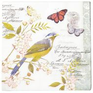 Artwrap Printed Napkins Bluebird 2 ply 33cm x 33cm 20 Pack