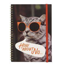 Uniti Fun & Funky Q4 Softcover Spiral Notebook Cat In Sunnies Red A5
