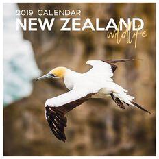 Calendar 2019 NZ Wildlife 16 290mm x 290mm