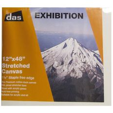 DAS 1.5 Exhibition Canvas 12 x 48in