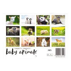 2020 Calendar Baby Animals A5