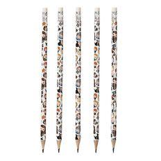 Harry Potter HB Pencils 5 Pack