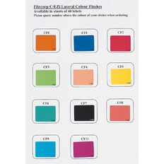 Filecorp Coloured Labels Z Multi-Coloured