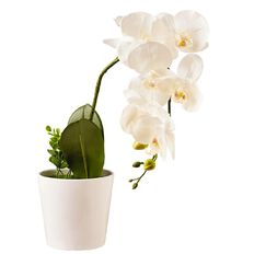 Living & Co Artificial Pot Orchid Flower White White 58cm