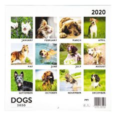2020 Calendar Dogs 290mm X 290mm