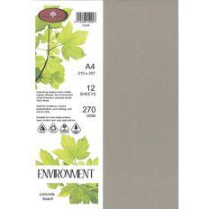 Direct Paper Enviro Board 270gsm 12 Pack Concrete Grey A4