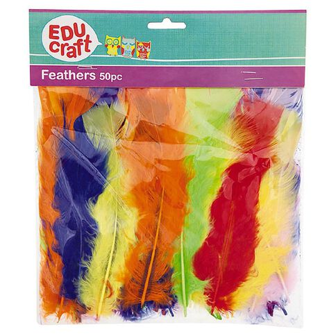 Educraft Feathers Assortment 50 Pieces