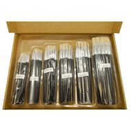 Fivestar Chinese Bristle Flat 577 Brush Classroom 144 Set
