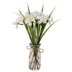 Uniti Daffodils In Glass Holder