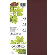 Direct Paper Coloured 240gsm Board 12S Mulberry
