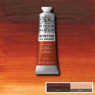 Winsor & Newton Winton Oil Paint 37ml Burnt Sienna