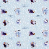 Frozen 2 Adhesive Book Cover