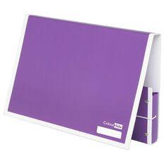 ColourHide Document Box Purple A4