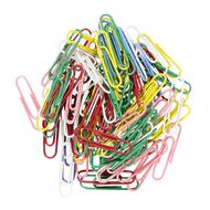 WS Paperclips 33mm 100 Pack Assorted
