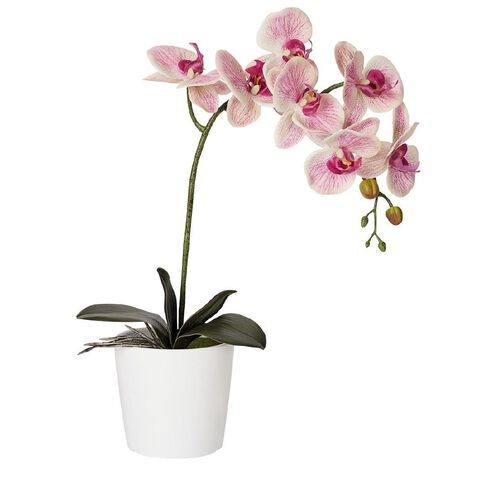 Living & Co Artificial Orchid Pink 58cm