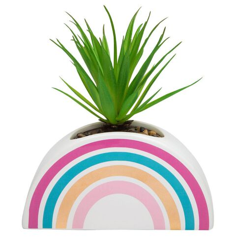 Kookie Ceramic Rainbow Swordgrass