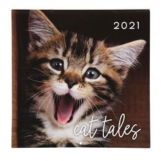 Bright Ideas 2021 Calendar Cats 290mm X 290mm