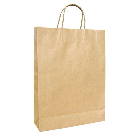 Medium Twisted Handle Paper Bag 25 Pack