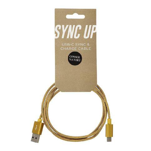 Positivity USB-C Cable Braided 1m Antique Gold