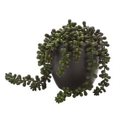 Living & Co Artificial Succulent Beaded Plant Black
