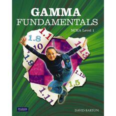 Ncea Year 11 Gamma Fundamentals Textbook