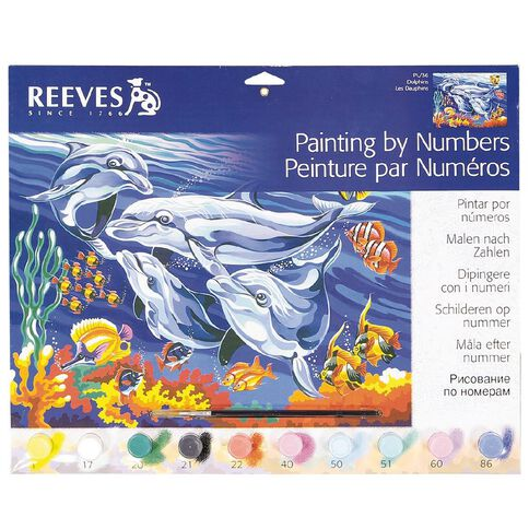 Reeves Paint By Numbers Large Assorted