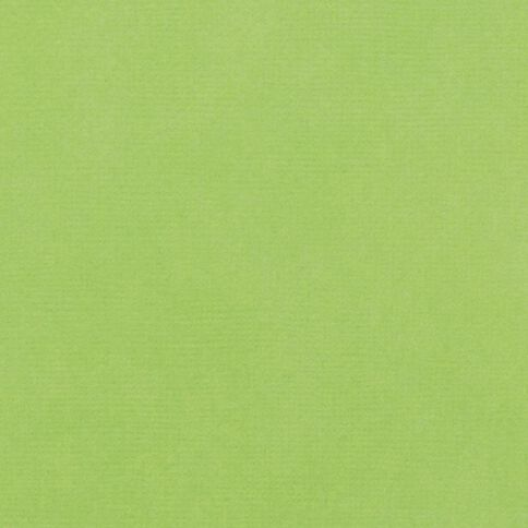 American Crafts Cardstock Textured 12 x 12 Cricket