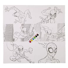 Spider-Man Paint Colouring Set