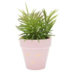 Kookie Artificial Potted Succulent Plant Pink