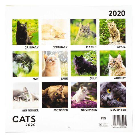 2020 Calendar Cats 290mm X 290mm