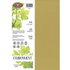 Direct Paper Enviro Paper 104gsm 25 Pack Honeycomb A4
